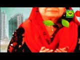 Masala Morning Shireen Anwar - Cocktail Kabab , Chatpatti Chicken , Lychee Delight Recipe on Masala Tv - 12th March 2015