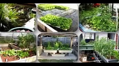 Aquaponics 4 You review-Aquaponics 4 you free download-Aquaponics 4 you pdf download