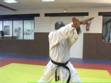 Pratiquez le karaté avec Eric Blesson - Apprenez les bonnes techniques avec un champion confirmé
