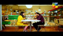Sartaj Mera Tu Raaj Mera Episode 13 on Hum Tv in High Quality 16th March 2015 - DramasOnline