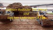 Liebherr Wheel Loader 576 2Plus2 und Liebherr Crawler Loader LR 634 in common loading Tipper