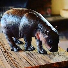 Un pui de hipopotam Pygmy face ravagii pe internet dupa ce a fost abandonat de mama lui
