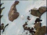 Le Cornouaille - Faune et flore au Pôle Nord - Un documentaire sur le boeuf musqué et les animaux du Pôle Nord