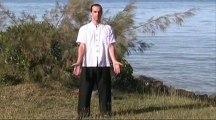 Tai chi chuan yang mode lent et décomposé série 1 volume 1 - Apprendre avec succès le tai chi chuan grâce a la méthode des 4 de Bretontao.