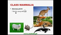 FSc Biology Book1, CH 10, LEC 17; Birds and Mammals