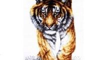 """Набор для вышивания крестом Палитра """"Поступь тигра"""", 25 см х 47 см"""