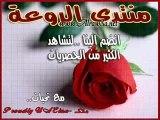 ahmad calls marwa 1