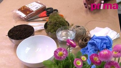 Comment faire un kokedama ? Plante à suspendre - DIY/Tuto déco-jardin