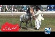 Dancing Horses 23rd March Azm-e-Pakistan Parade