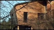Croissance verte - Du bois dans les murs