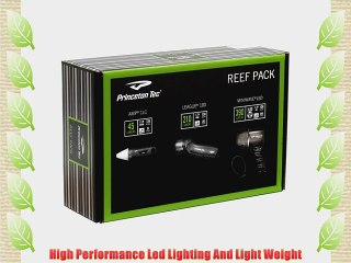 Princeton Tec Reef Pack LED Dive Light