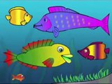 Meet Ploop The Baby Fish! Educational Cartoons for Kids and Children - childrens phim hoạt hình,만화 어린이