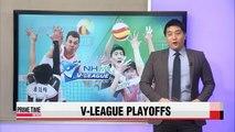 V-League: KEPCO vs. OK Savings Bank