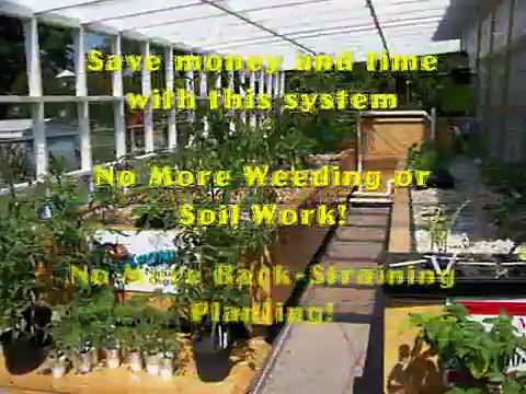 FREE Aquaponics How to – Get Your Aquaponics 4 You Now