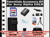 8GB Accessory Kit For Sony A55 A33 DSLR SLT A55 SLT A33 NEX-5T A3000 Camera Includes 8GB High