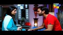 Sartaj Mera Tu Raaj Mera Episode 19 Full [HQ] Drama on Hum Tv 25th March 2015