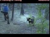 hunting for black bear - Hunting TV