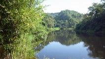 Marcelo Ambrogi, Natureza Indômita, Rio Paraibuna, Mergulhos Sub-aquáticos, Onças, Aranhas, Peixes, Serra do Mar, (7)