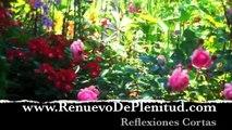 Reflexiones - Autoestima - potencial - Videos Cristianos
