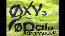paramoteur rc  oxy 1.5 et oxy 3.0 team opale paramodels lille