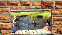 TOP Fails Compilation 2015 new Best Fails Win Funny Pranks Ultimate Funny Fail Vines Funniest Videos