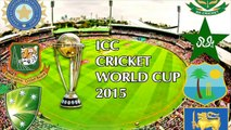 World Cup final MCG attracts record 93 013 attendance