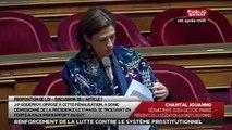 Proposition de loi renforçant la lutte contre le système prostitutionnel - Discussion des articles - En séance