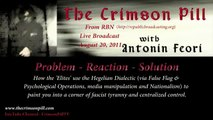 Hegelian Dialectic & You (1/3) - 'How the Elites Manipulate Us' on The Crimson Pill