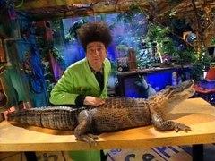Beakman's World: Alligators and Crocodiles thumbnail