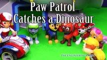 Paw Patrol Toys - PAW PATROL Nickelodeon Paw Patrol & Team Umizoomi Dinosaur Hunt a Paw Patrol Parody