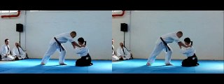 [3D] AIKIDO 合気道 MARTIAL ARTS IN HIGH SPEED + SLOW MOTION KUNGFU FIGHTING - Manifest 2011