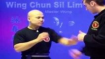 ---Wing Chun kung fu - wing chun  siu lim tao Lesson 2