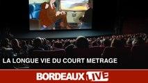Les courts-métrages : l'avenir du cinéma français ?