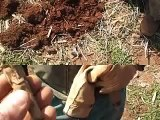 EPIC Civil War relic hunt! DIV metal detecting relics, Virginia T2 1270