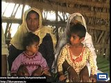 Jirga orders handover of two girls as Wani in Ghotki