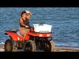 COWLEY BEACH ENDANGERED LITTLE TERN NESTING THREATENED BY BEACH/DUNE DRIVERS
