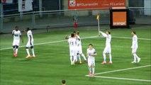 04/04/15 : FCL-SRFC : les buts du Stade Rennais