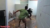 Il se déguise en gorille et terrorise les mecs aux toilettes !