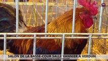 Reportage - Salon de la basse-cour du 4 au 6 avril 2015 à Verdun