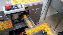 www.wirowki.com, Egg breaker Rz1, separating yolks whites, wybijarka do jaj