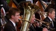 Hammer ! Neujahrskonzert 2010 : Radetzky March - Johann Strauss ( Achtung : Videoinfos lesen ! )