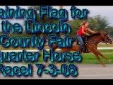 Training my Quarter horse Flag for the Quarter horse race !!