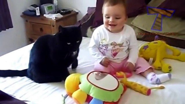 Funny cats and babies playing together - Cute cat & baby compilation