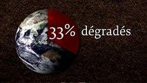Bonne journée mondiale des sols!