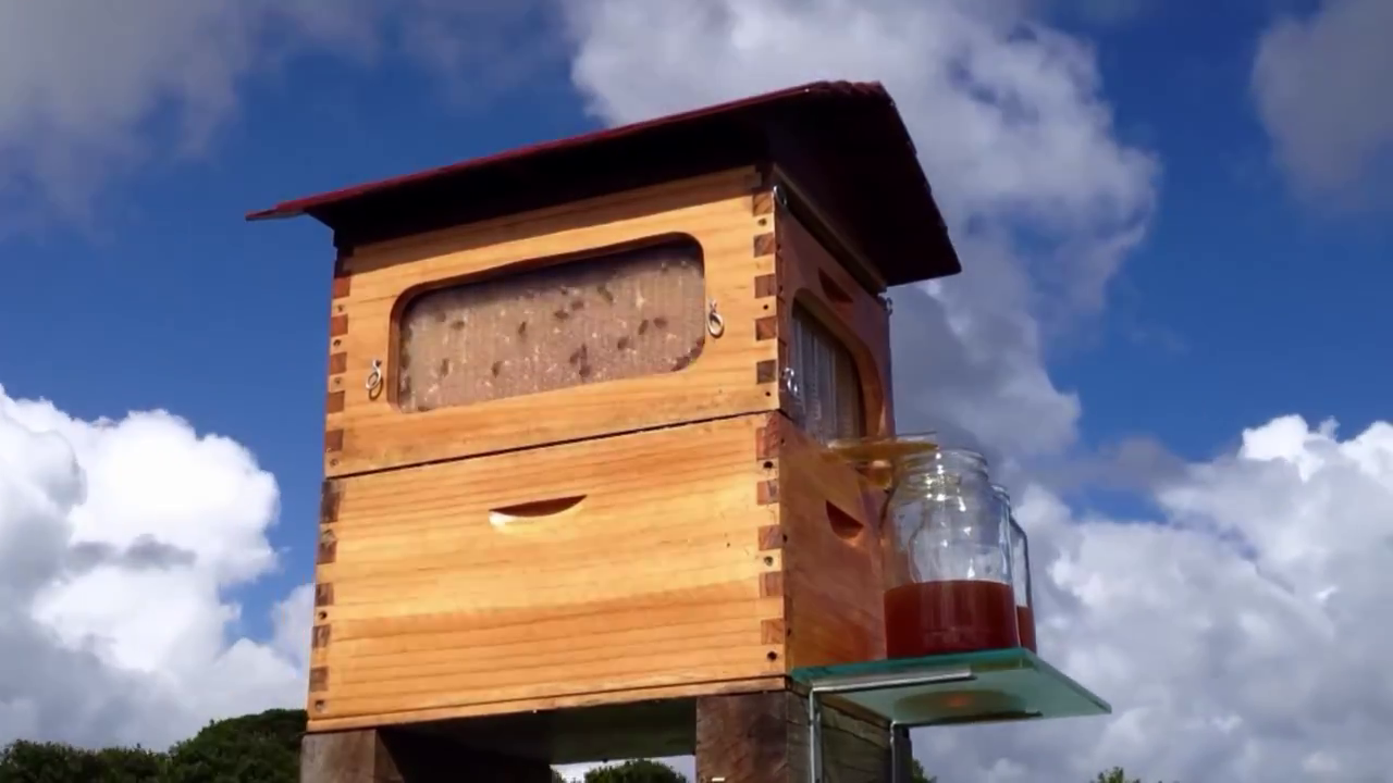 Easiest Way to Get Honey – Flow Hive