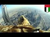 Orzeł skacze z najwyższego budynku na świecie