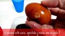INCREIBLE !! -- COCA-COLA se come nuestros huesos. Un huevo es atacado por la Coca-Cola !!