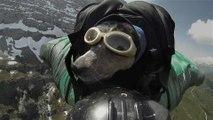 World's First BASE Jumping Dog
