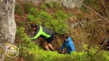Trail Référence 01: Le Massif des Vosges (saison 2)