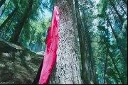 Tu Itni Khoobsurat Hai - Barkhaa-2015 _ HD Video -itni khoobsurat hay-itni khoobsurat hay-Tu Itni Khoobsurat Hai (Barkha)-Tu Itni Khoobsurat Hai HD Video Song - Rahat Fateh Ali Khan - Barkhaa [2015] - Video Dailymotion